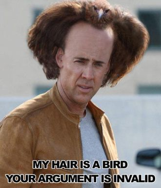 Jūsų argumentas yra invalidas, nes mano plaukai - paukštis.