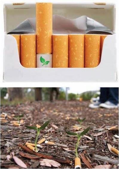 Tai cigaretės su suįrančiu filtru, kuriame yra augalo sėkla. Iš numestos nuorūkos išdygsta augalėlis