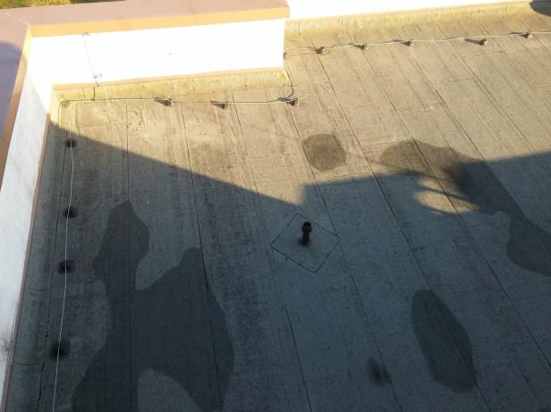 Švarus stogas 6